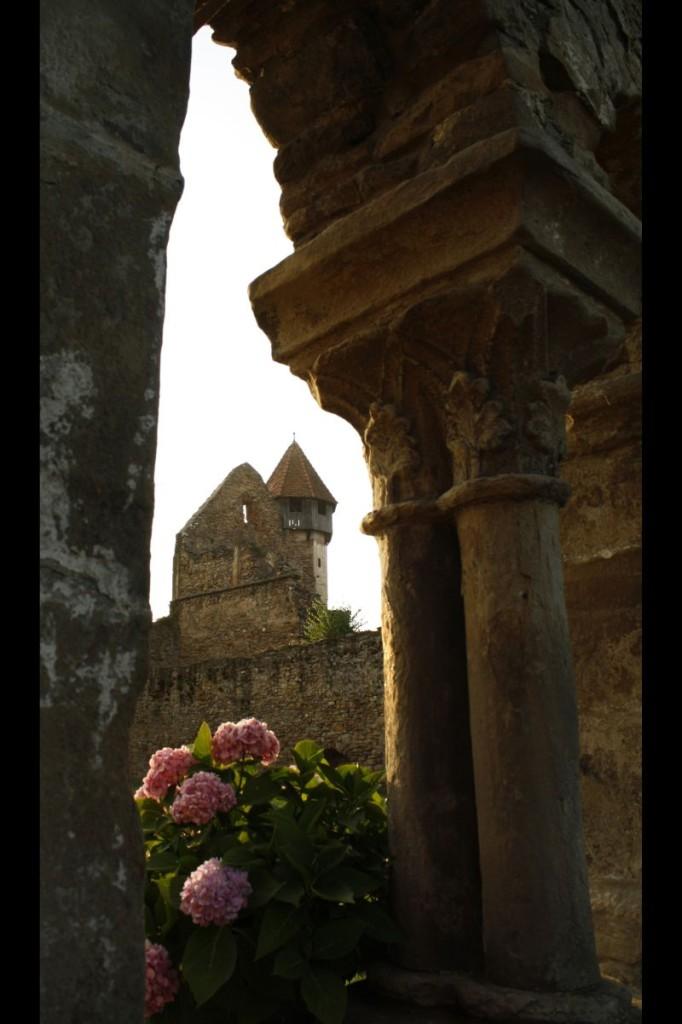 Locul I - MITROI PATRICK - Biserica cisterciana Carta